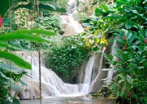 Paquete Jamaica