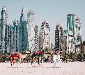 Paquete Dubái & Abu Dhabi