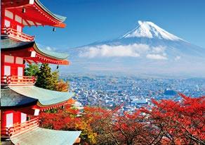 Paquete Japón